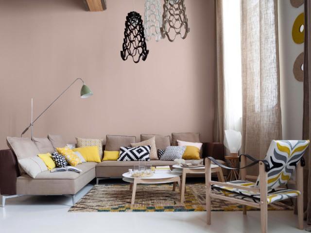 d co quand les coussins dynamisent nos canap s. Black Bedroom Furniture Sets. Home Design Ideas