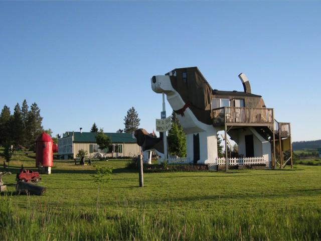 L'architecture mimétique dans toute sa splendeur - Une maison en forme de chien