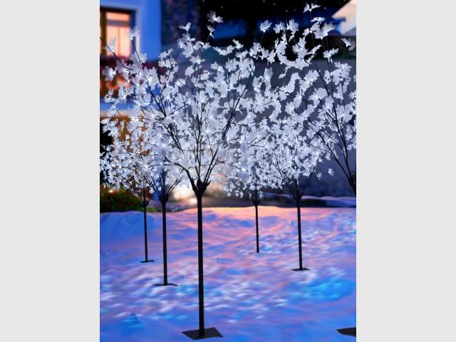 Des végétaux lumineux pour un jardin festif - Une maison illuminée pour Noël