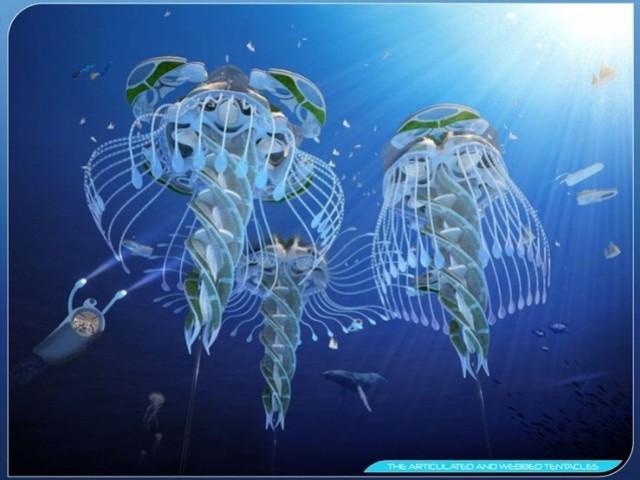 Des constructions aux allures de méduses et de poulpes - Aequorea