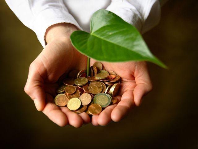 argent - main - végétal