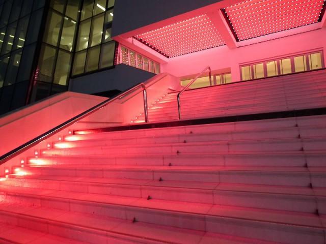 Un tapis (de lumière) rouge - Palais des Festivals de Cannes