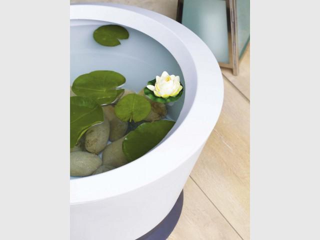 Un jardin aquatique