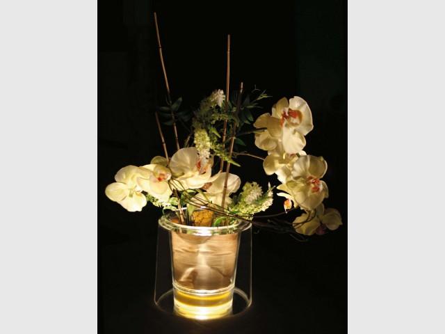 Un pot pour orchidées