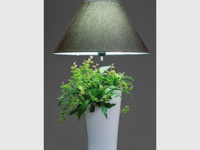 Une lampe végétale autonome - Lampe végétale