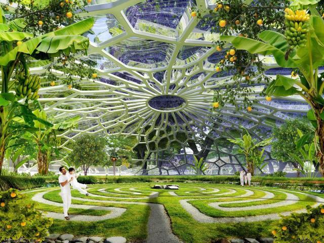 Hypérions : un écosystème artificiel - Hypérions