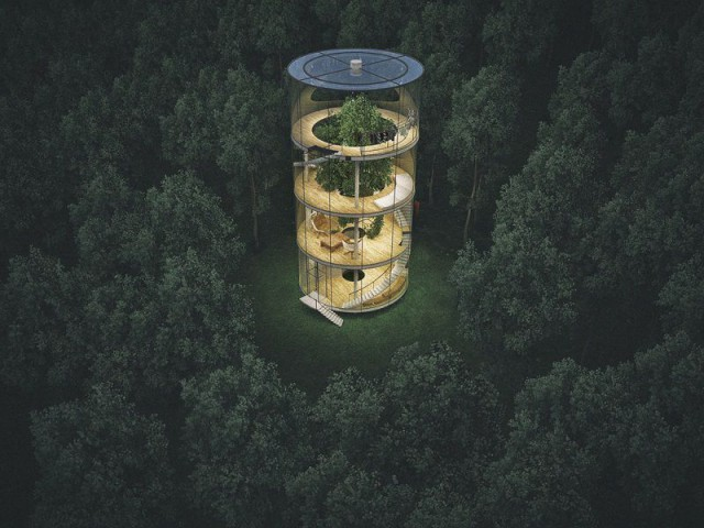 Tree House : un arbre sous cloche ? - Tree House