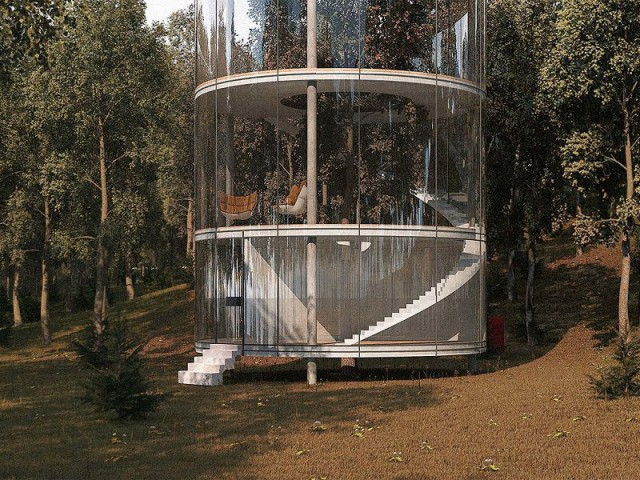 Tree House : des étages qui couronnent l'arbre - Tree House