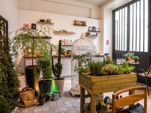 La végétation se fait une vraie place à l'intérieur - Un appartement conçu par et pour la Génération Y
