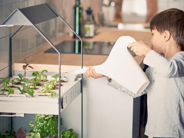 Le jardinage pour les petits