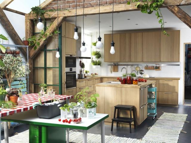 Un mini îlot pour une ambiance végétale  - Un îlot original pour une cuisine conviviale