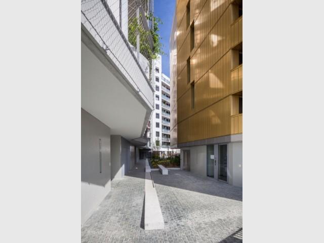 Flat Copper : un jardin planté au sol et en façade - Flat Copper - Badia Berger architectes