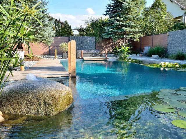 Une filtration de piscine entièrement végétale - Une piscine naturelle en Alsace