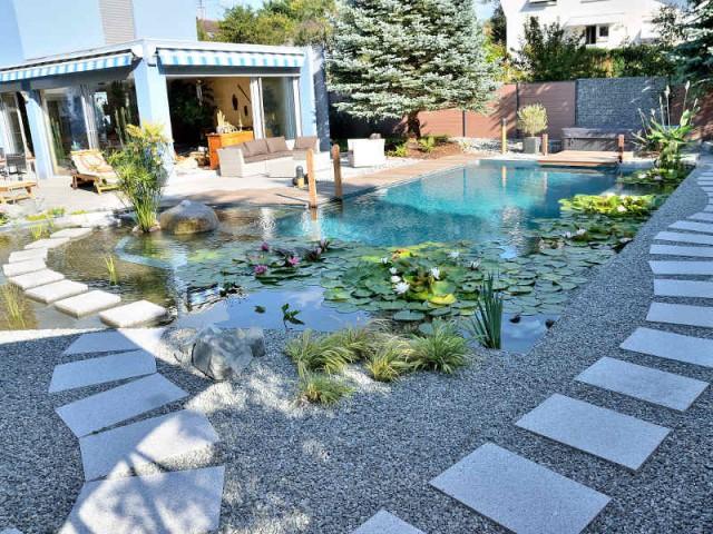 Des pas japonais pour une piscine zen  - Une piscine naturelle en Alsace