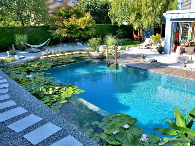 Un entretien plus contraignant pour un bassin naturel - Une piscine naturelle en Alsace