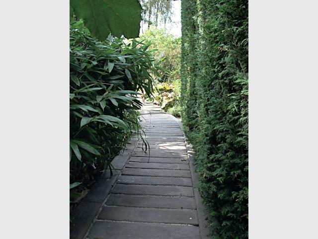 Une allée en pierre imitation bois pour un jardin mystérieux - Une allée bien structurée pour mon jardin