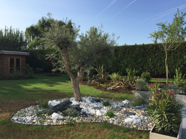 Une végétation méditerranéenne pour un jardin parisien - Un jardin écologique aux nuances japonaises