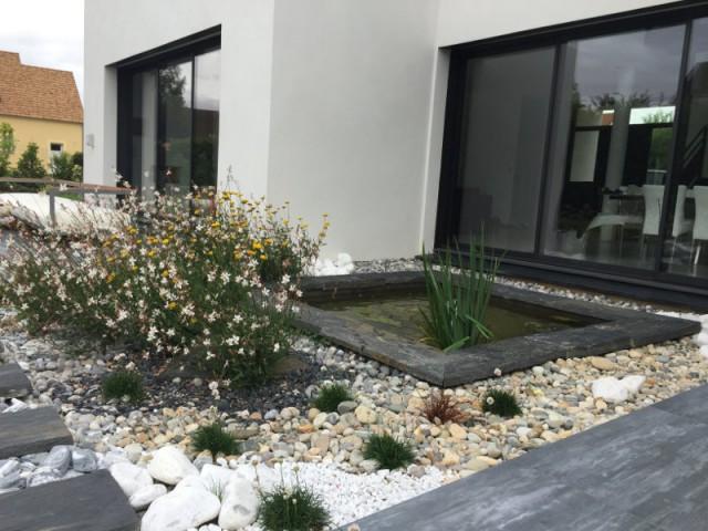 Un bassin écologique aux allures japonaises  - Un jardin écologique aux nuances japonaises