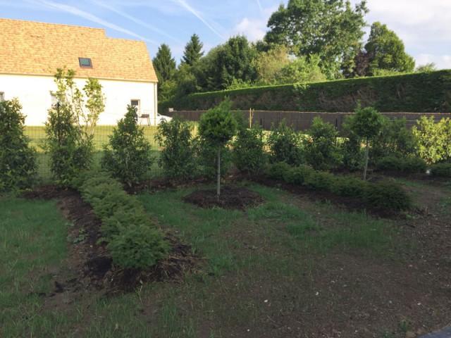 Des végétaux de jardin traités naturellement  - Un jardin écologique aux nuances japonaises