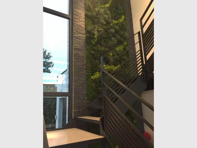 Un mur végétal pour une ambiance intérieure naturelle - Un jardin écologique aux nuances japonaises