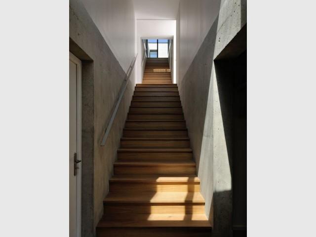 Un escalier central comme une colonne vertébrale  - Une maison en béton grimpe au cœur des vignes
