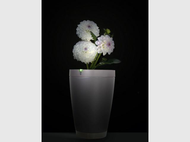 Un pot robotisé pour prendre soin de vos plantes à distance - Prendre soin de ses plantes en vacances