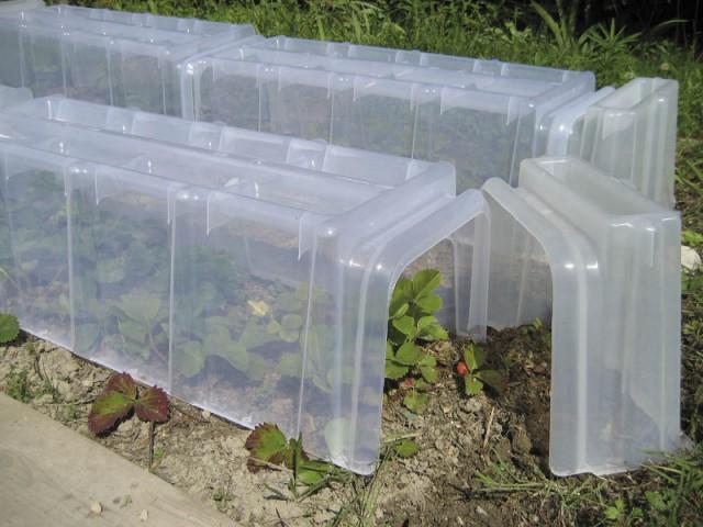 Une mini-serre pour protéger vos plantes des intempéries - Prendre soin de ses plantes en vacances