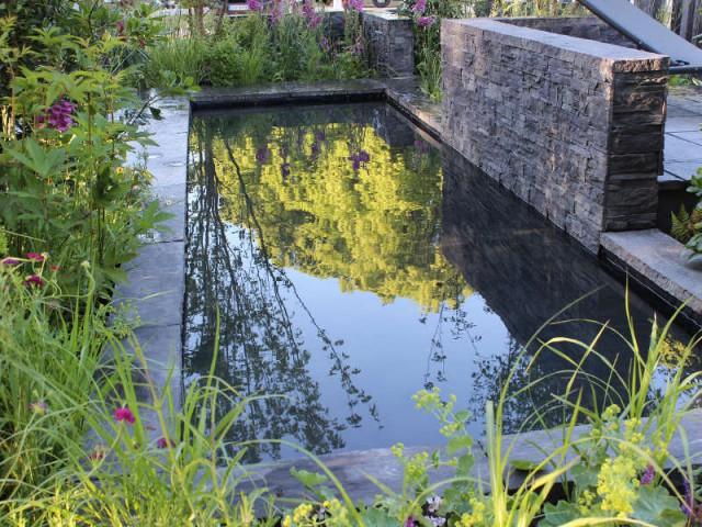 Un bassin fondu dans la végétation pour un jardin sauvage - Un bassin esthétique pour mon jardin