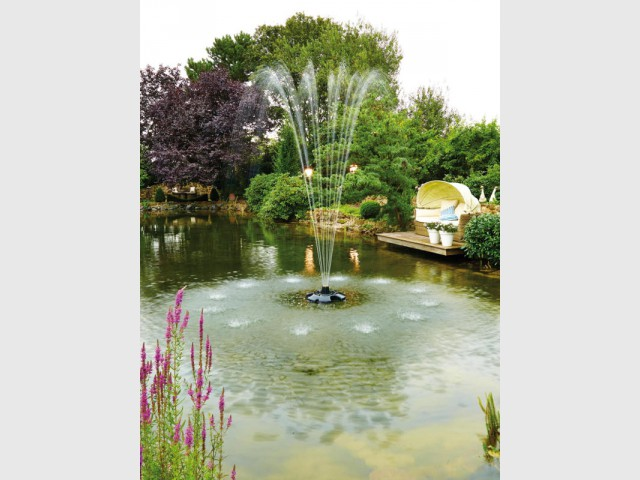 Un étang pour un jardin luxueux - Un bassin esthétique pour mon jardin