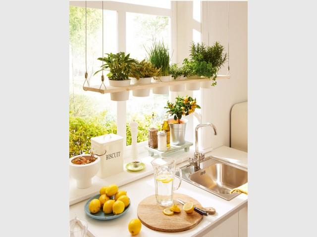Une étagère suspendue pour pots de fleurs