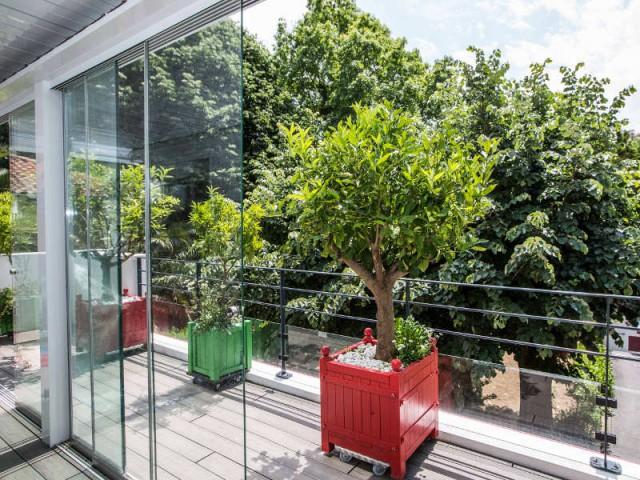 Une terrasse en bois pour cultiver des agrumes - un rouge flamboyant pour la façade d'une maison