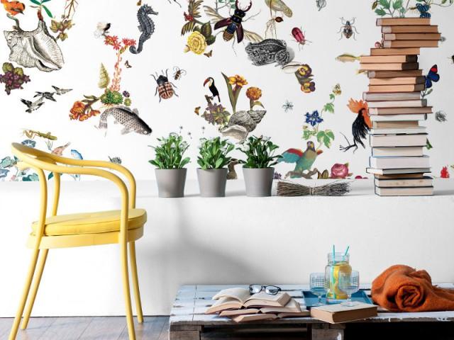 Le papier peint inspiré des planches Deyrolle pour un intérieur éducatif  - Papier peint : les tendances 2016 à adopter