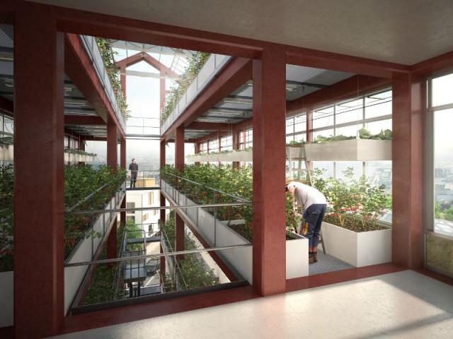 Tour maraîchère écologique à Romanville (93) - Ferme urbaine