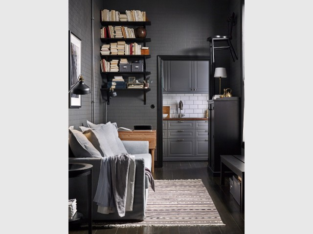 petit espace un mini canap pour ne pas surcharger le salon. Black Bedroom Furniture Sets. Home Design Ideas