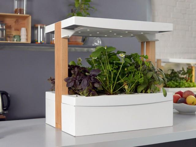 Un module du potager Fresh Square avec éclairage