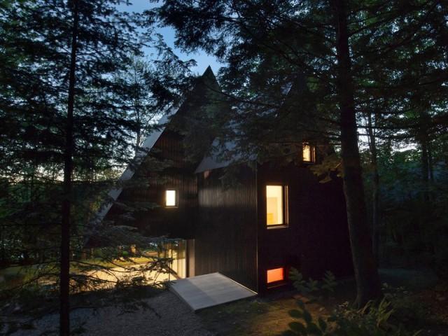 Une maison en bois noir dans la forêt canadienne