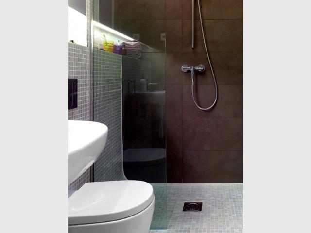 Une salle de bains avec douche à l'italienne