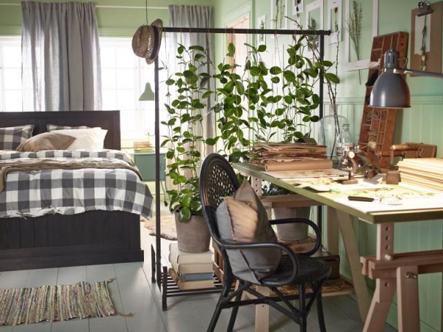 Un mur végétal entre mon bureau et ma chambre