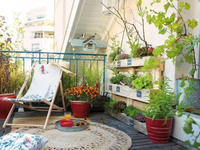 Cultiver sur son balcon