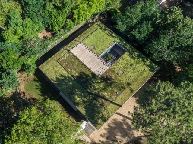 Une toiture végétalisée au coeur des pins