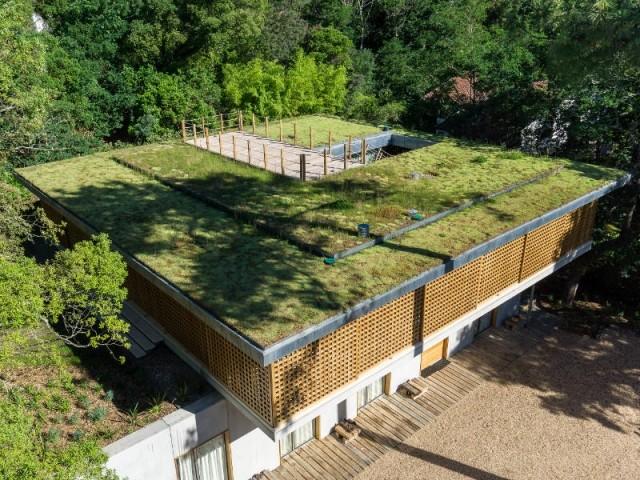 Une toiture végétalisée comme point d'observation