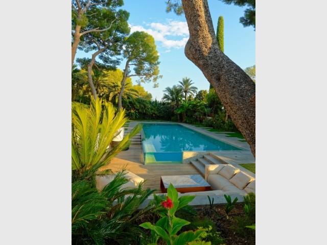 Une piscine aux parois de verre plongée dans la végétation - Piscine, exemple d'intégration exemplaire