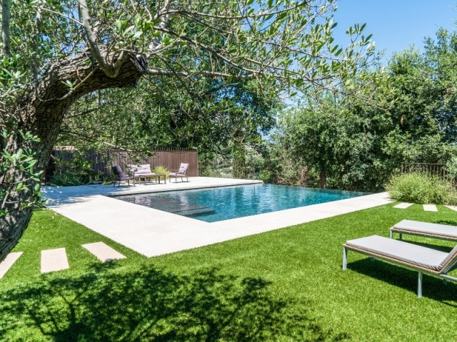 Une petite piscine entourée de verdure