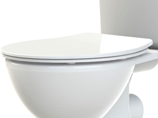 Des toilettes équipées d'un abattant ultra plat