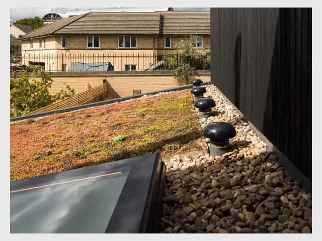 Une toiture végétalisée pour une extension bien isolée