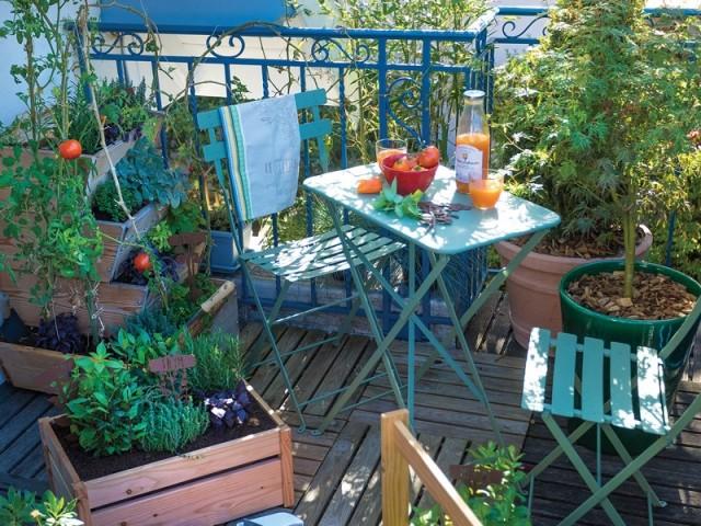 vacances canicule les bons gestes pour sauver vos plantes en t. Black Bedroom Furniture Sets. Home Design Ideas