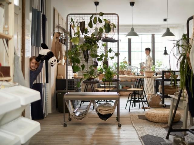 Un meuble végétalisé pour délimiter un espace de séjour
