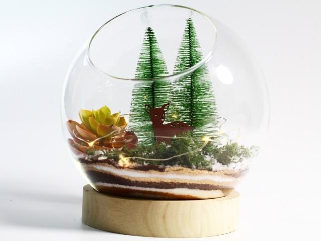 Un petit terrarium de Noël lumineux