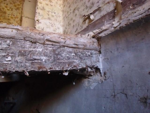 Habitat dégradé dans la région de Marseille - Habitat dégradé à Marseille