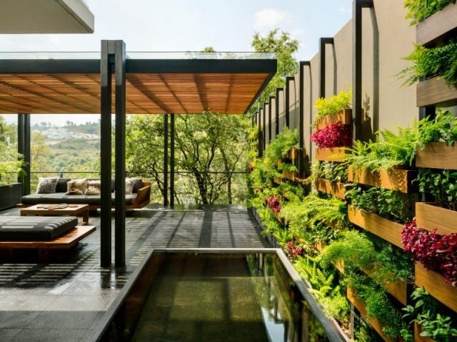 Le mur végétal et la pergola de la Villa Jardin